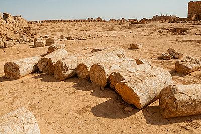 Byzantinische Ruinenstadt Resafa, Sergiopolis, nahe des Euphrats, Syrien - p1493m2063538 von Alexander Mertsch