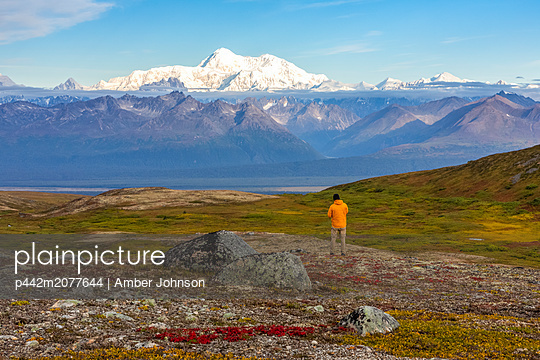Man taking in the view, backpacking on the Kesugi Ridge Trail, Denali State Park, in the autumn with the Alaska Range in the background, South-central Alaska; Alaska, United States of America - p442m2077644 by Amber Johnson