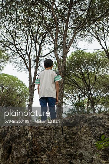 Rückansicht eines Junges im Wald - p794m2031657 von Mohamad Itani