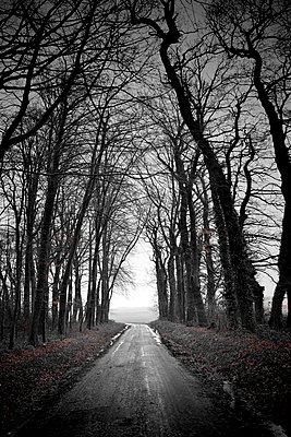 Theuville-aux-Maillots - p1137m1072609 von Yann Grancher