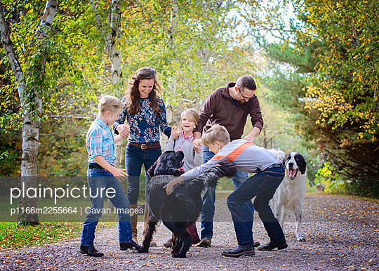 Happy family of 5 playing with two dogs on a country road. - p1166m2255664 by Cavan Images