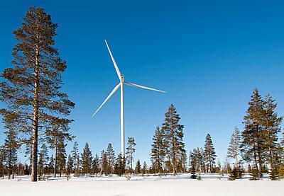 Windkraftanlage und Kiefern im Winter - p1079m1042428 von Ulrich Mertens