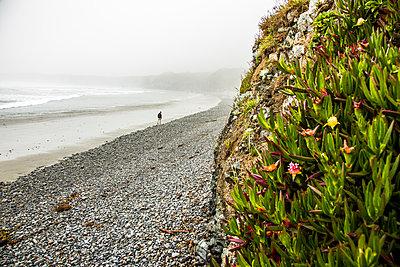 Distant Caucasian man walking on ocean beach - p555m1482064 by Adam Hester