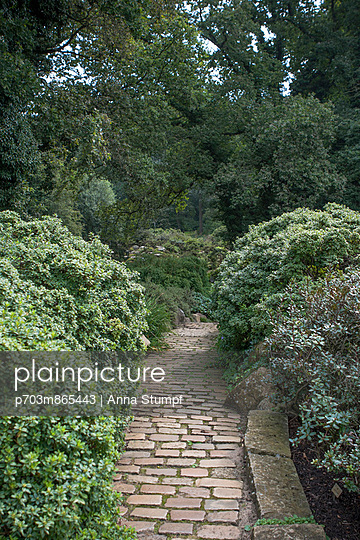 Path in a park - p703m865443 by Anna Stumpf