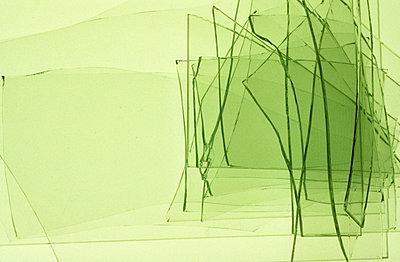 Grünes Glas übereinander - p2370703 von Thordis Rüggeberg