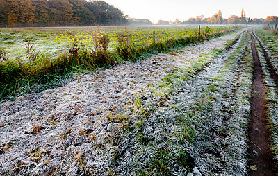 Frosted ground - p6990078 by Sonja Speck
