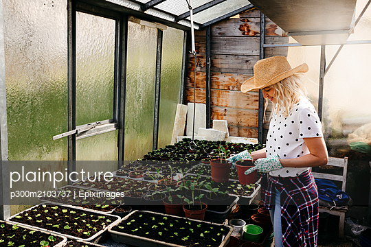 Young woman gardening in a greenhouse - p300m2103737 by Epiximages