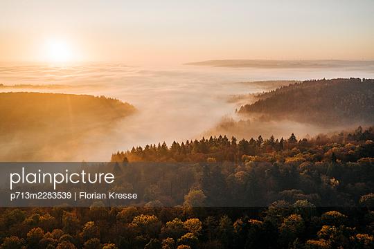 Rhine river in the morning fog, Rhineland Palatinate - p713m2283539 by Florian Kresse