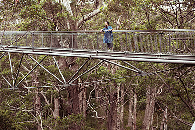 figure in blue stands high up in tall tree forrest on tree top walk - p1166m2136727 by Cavan Images