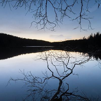 Lake with twilight - p816m1032262 by Jensen, Kai