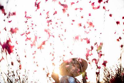 A girl picks peach blossoms, Northern Vietnam, Southeast Asia - p934m893132 by Aaron Joel Santos
