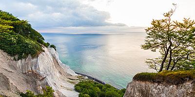 Denmark, Mon Island, Mons Klint, Chalk cliffs - p300m1166229 by Werner Dieterich