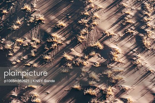 Gräser in der Wüste, Luftaufnahme, Sossusvlei, Namibia - p1065m982621 von KNSY Bande
