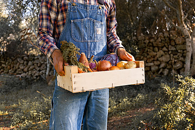 Young man holding vegetable crate at farm - p300m2243738 by Sus Pons