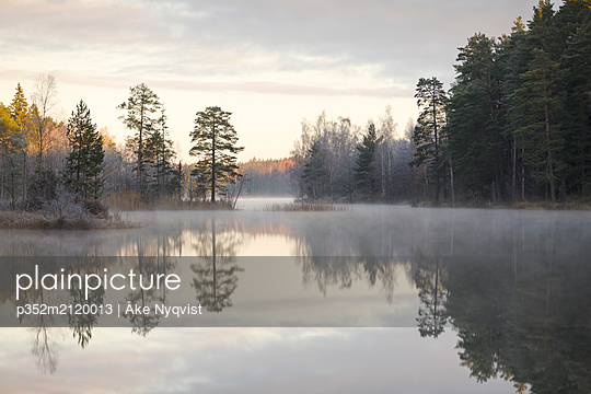 Forest by lake in Lotorp, Sweden - p352m2120013 by Åke Nyqvist