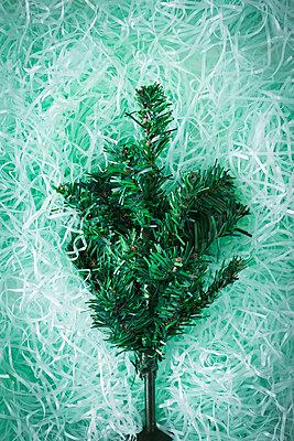 Weihnachtsbaum - p1149m1497566 von Yvonne Röder