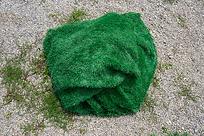 Artificial grass - p1657m2301073 by Kornelia Rumberg