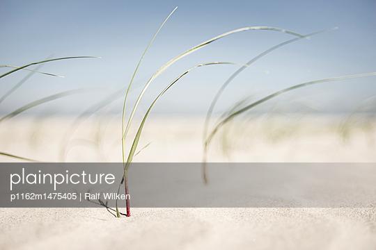 p1162m1475405 by Ralf Wilken