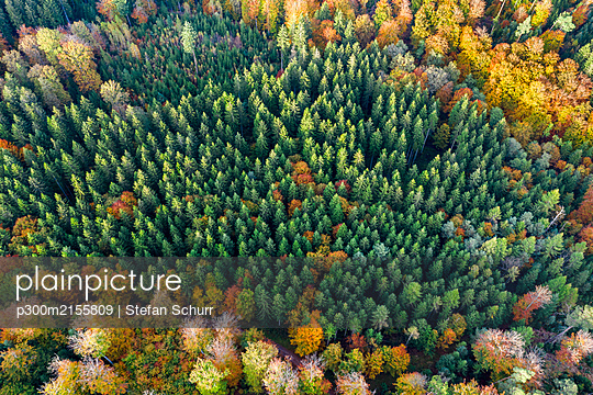 Germany, Baden-Wurttemberg, Aerial view of Swabian-Franconian Forest in autumn - p300m2155809 by Stefan Schurr