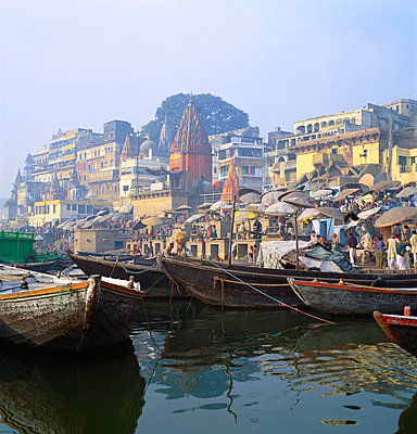 Boats Moored in Front of Ghats on the River Ganges - p871m861969f by Tony Gervis