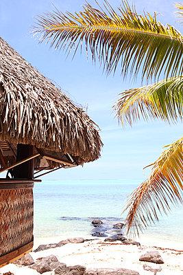 Thatched hut - p045m658452 by Jasmin Sander