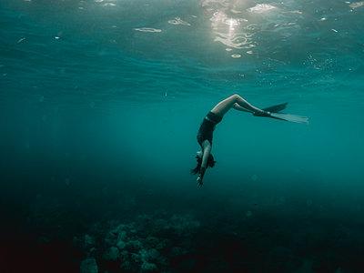 Free diving - p1166m2138065 by Cavan Images