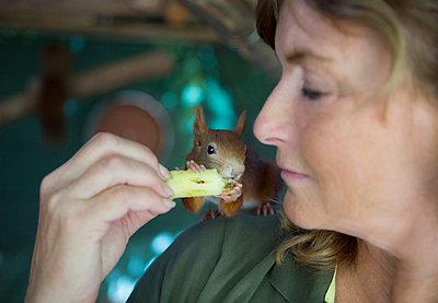 Woman feeding a squirrel - p1221m1488245 by Frank Lothar Lange