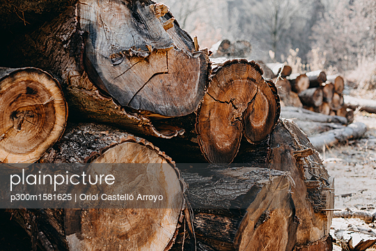 Stack of wood - p300m1581625 von Oriol Castelló Arroyo