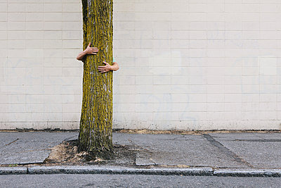 Man hugging tree on urban street and sidewalk - p1100m876546f by Paul Edmondson