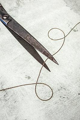 Scissors and thread - p971m1196149 by Reilika Landen