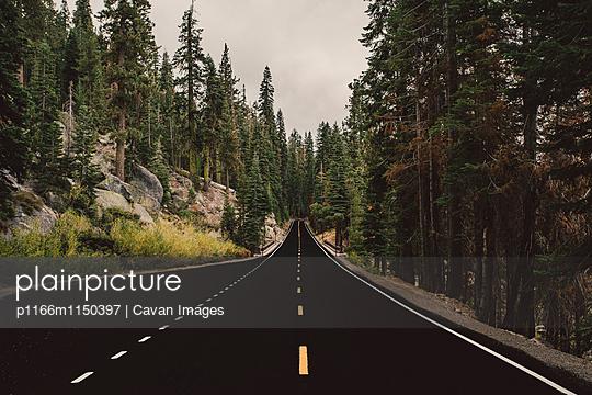 p1166m1150397 von Cavan Images