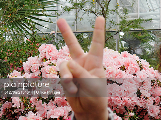 Victory sign - p1279m2134044 by Ulrike Piringer
