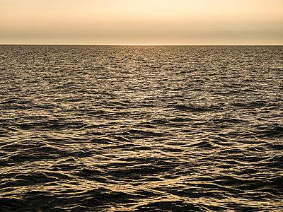 Blick über das weite Meer - p1685m2272483 von Joy Kröger