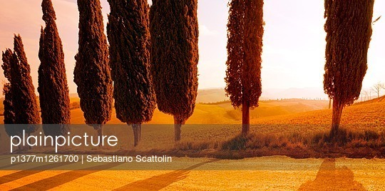 p1377m1261700 von Sebastiano Scattolin