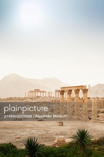 Ruinen der Oasenstadt und UNESCO-Weltkulturerbe Palmyra nahe Damaskus, Syrien - p1493m2063568 von Alexander Mertsch