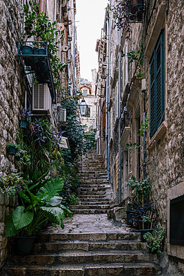 Narrow alley with many stone steps, Dubrovnik, Croatia - p1600m2184190 by Ole Spata