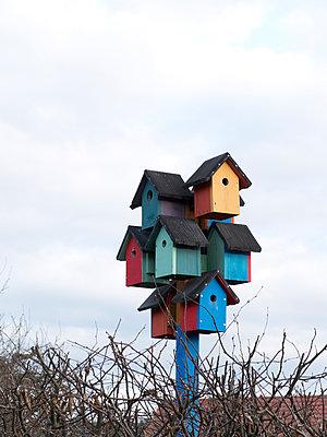 Bunte Vogelhäuschen - p240m1468128 von Valerie Wagner