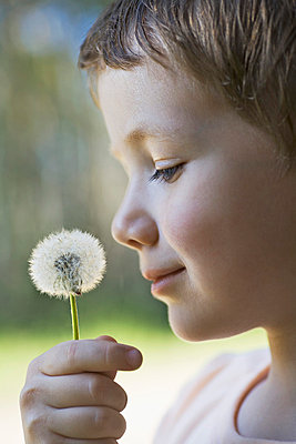 A boy holding a dandelion up to his nose - p30119458f by Vladimir Godnik
