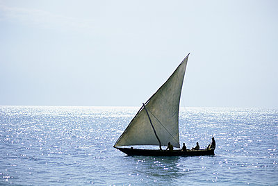 Dhow in silhouette on the Indian Ocean, off Stone Town, Zanzibar, Tanzania, East Africa, Africa - p871m1073998f by Lee Frost