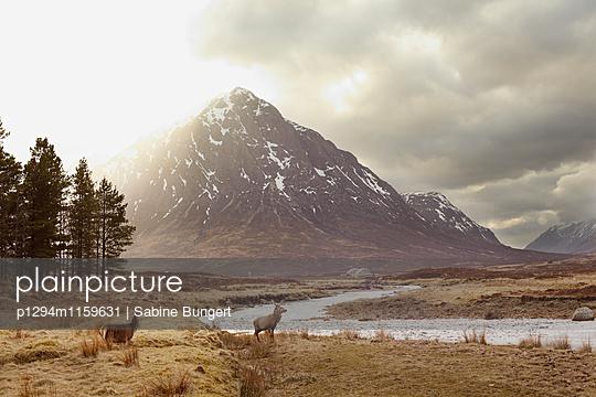 Highlands - p1294m1159631 von Sabine Bungert