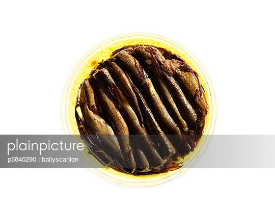 Eaten up - p5840290 by ballyscanlon