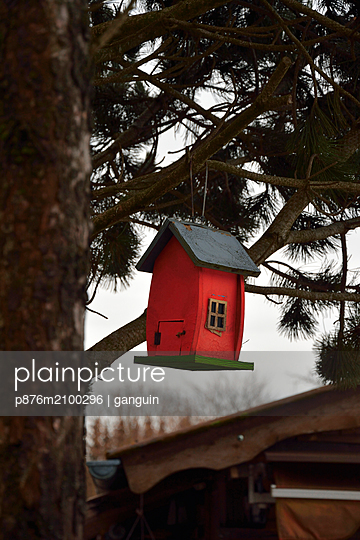 red bird house - p876m2100296 by ganguin