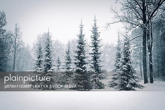 p970m1123882 von KATYA EVDOKIMOVA