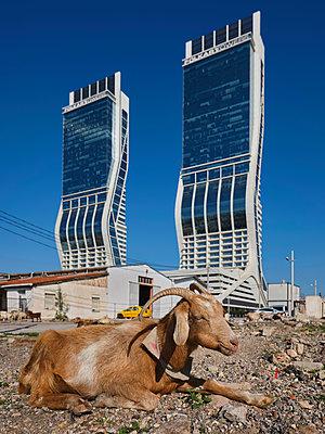 Turkey, Folkart Towers in Izmir - p390m2254459 by Frank Herfort