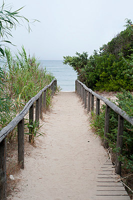 A path to the sea - p951m853299 by Caterina Sansone