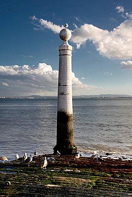 Columns pier in Lisbon - p1032m1110673 by Fuercho