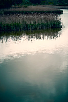 Reeds and clouds reflected in river running alongside marshland - p1047m2279931 by Sally Mundy