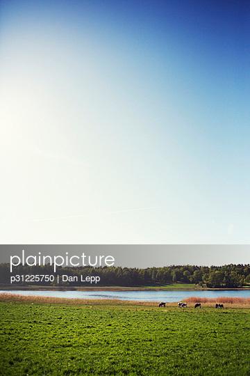 p31225750 von Dan Lepp
