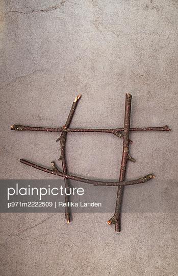 Branches - p971m2222509 by Reilika Landen