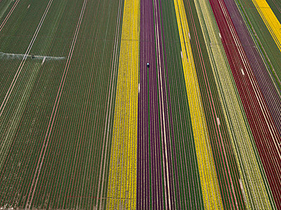 Agriculture - p3560167 by Stephan Zirwes
